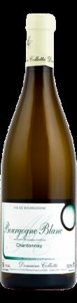 Bourgogne Chardonnay - Domaine Collotte